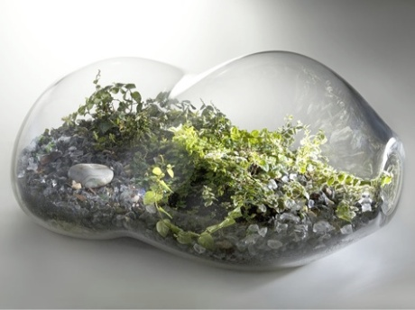 paula-hayes-sideways-terrarium